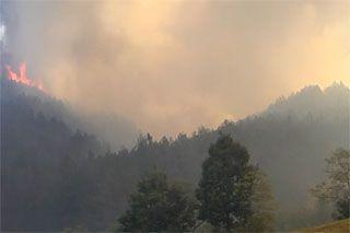 Požar u Bosilegradu