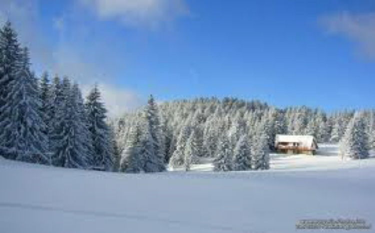 Inicijativa da se  Stara planina proglasi rezervatom biosfere