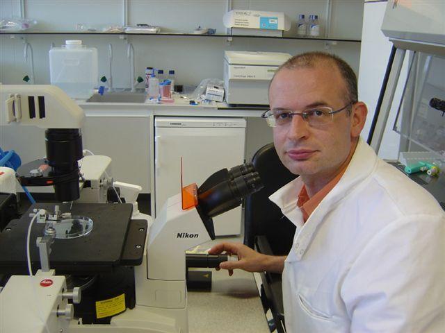 Miodrag Stojković ipak ostaje šef katedre za matične ćelije u Kragujevcu