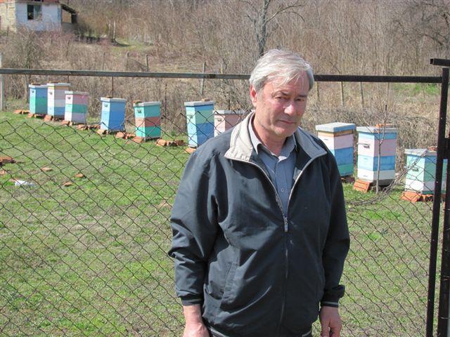 Lopovi pustoše pčelinjake
