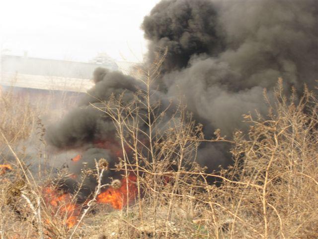 Požar pored autoputa kod Pečenjevca