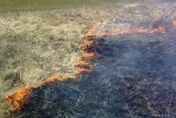Požar u Gornjoj Lokošnici