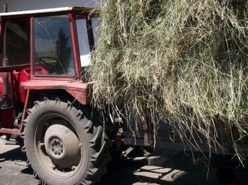 Poginuo traktorista u Svrljigu