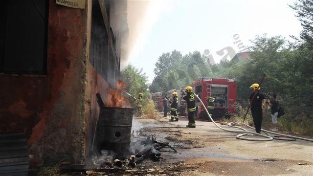 Požar uništio 11 zaplenjenih vozila