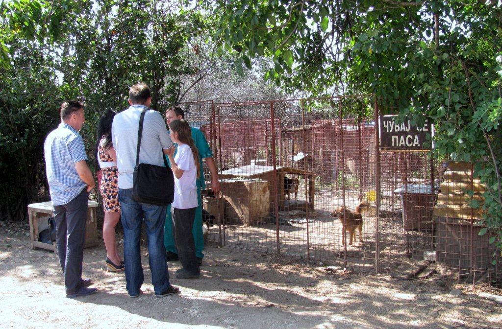 Problematična deponija i azil za pse