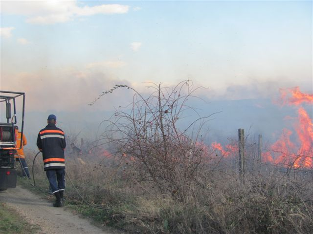 Vatrogasci ugasili pet požara