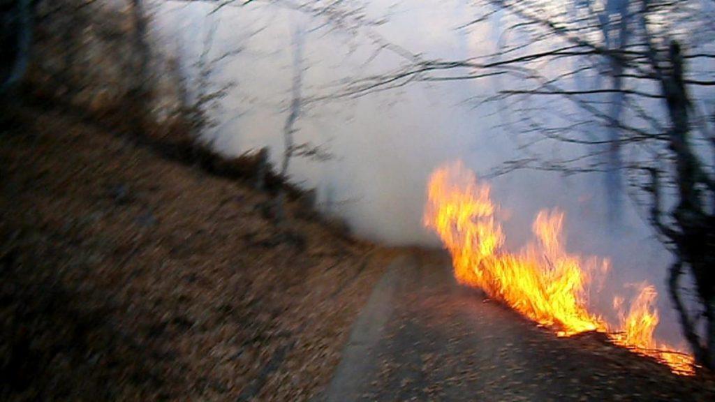 Bukti požar u opštini Žitorađa