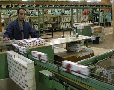 Skuplje cigarete proizvedene u Vranju