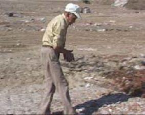 Pronađena kašikara na deponiji smeća