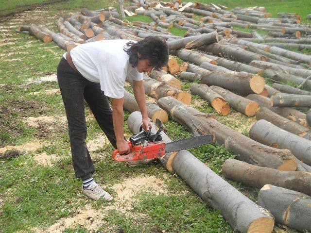 Zorica jedina žena među drvosečama u niškom kraju