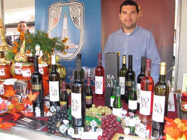 """""""Toplički vinogradi"""" grade najveću vinariju na Balkanu"""