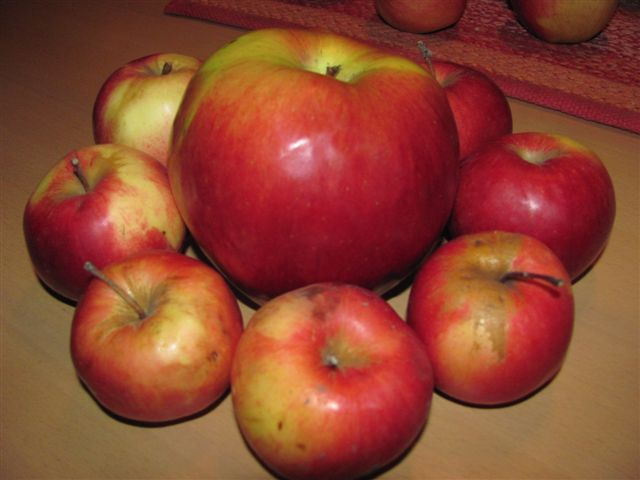 Džinovska jabuka na leskovačkoj pijaci