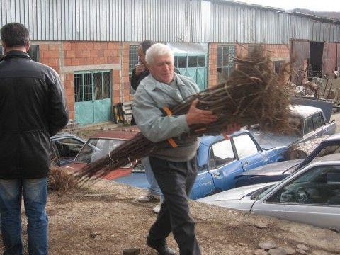 Hanski poljoprivrednici dobili sadnice