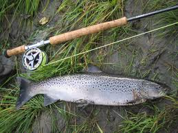 Počela prodaja dozvola za ribolov na Vlasini