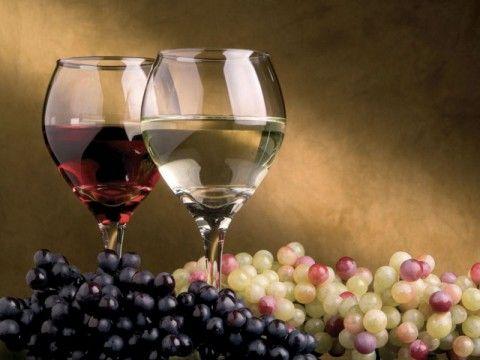 Konkurs za izbor najboljeg vinara, vinograda i Mis Vinskog bala