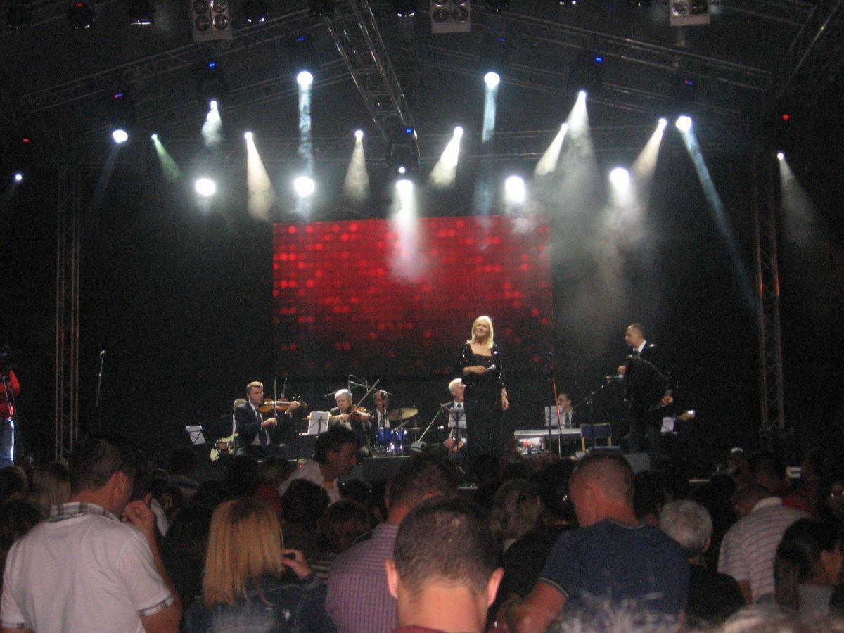 Miroslav Ilić peva na Danima Vranja