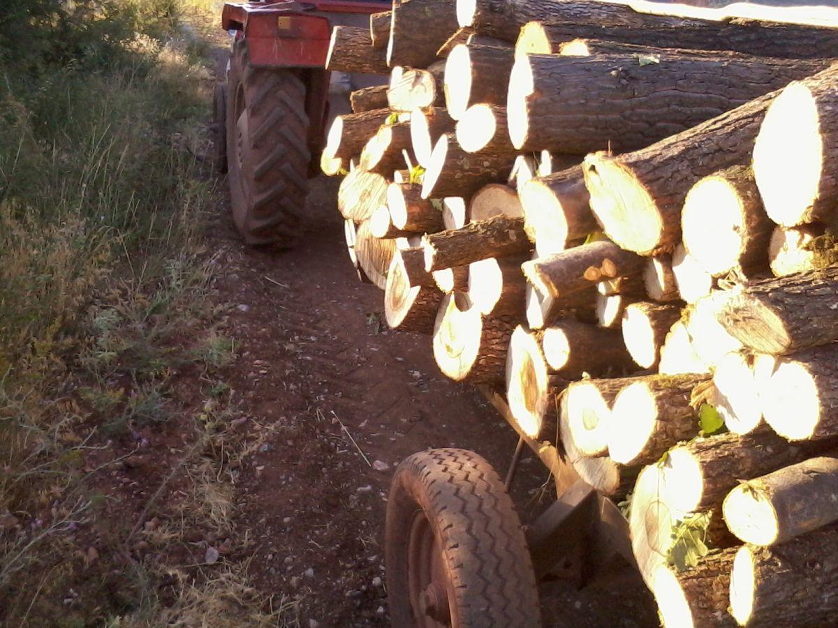 Ogrevno drvo i ugalj sve traženiji