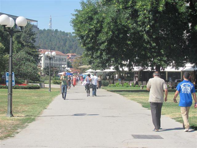 Počelo uništavanje komaraca u Leskovcu