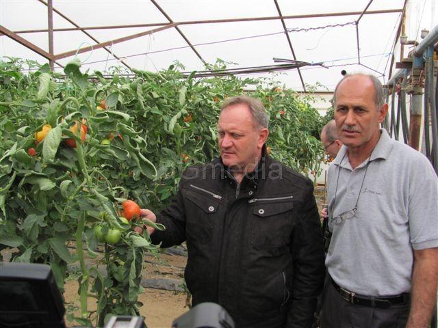 Cvetanović: Šansa za posao na poljoprivredi