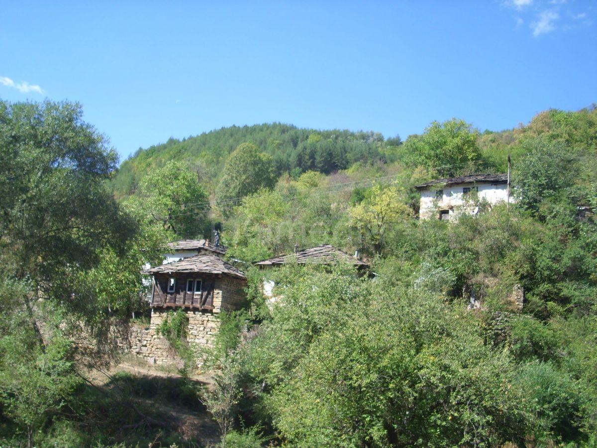 Studenti u staroplaninskom selu Gostuša