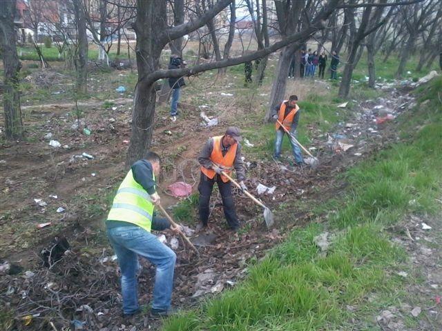 Otkrivena stoletna stabla hrasta prilikom čišćenja deponije