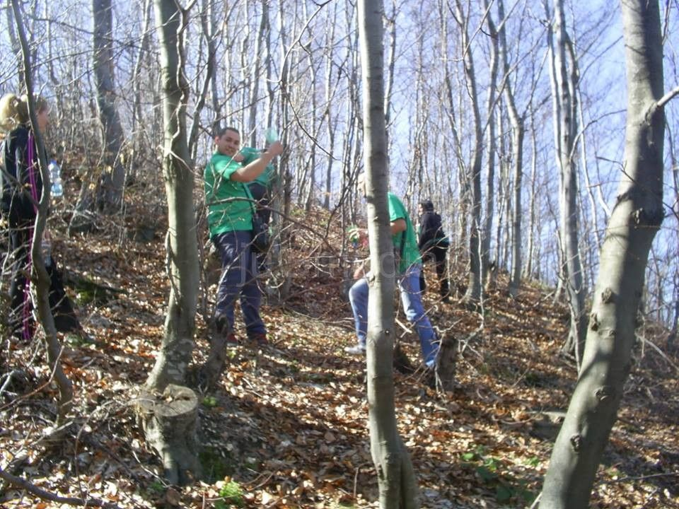 Zeleni: Ekološka katastrofa zbog seče šume