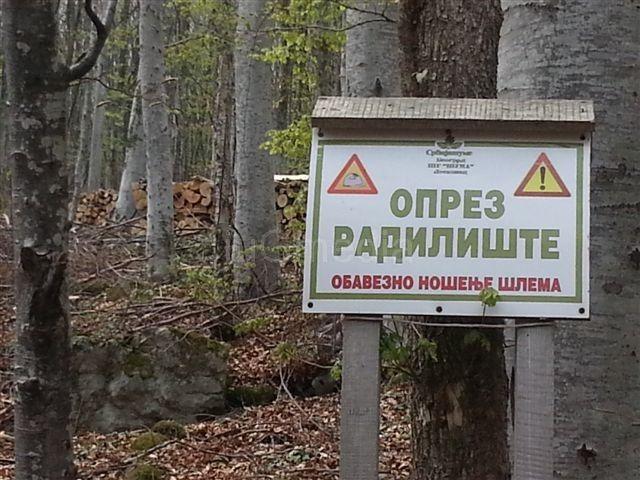 Stojanović: Srbijašume od Radan planine prave Suvu planinu