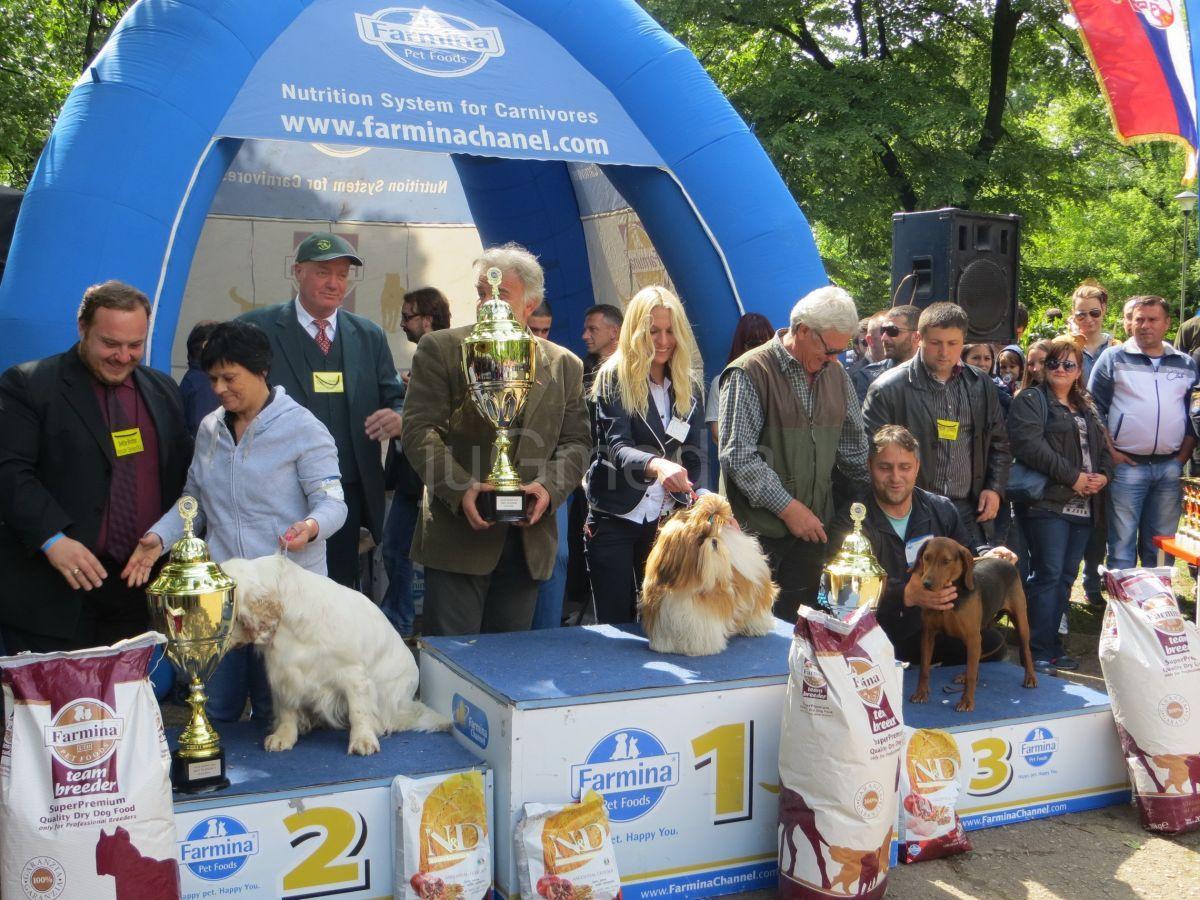 Održana  Međunarodna izložba pasa u Vranju