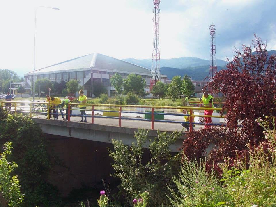 Vredni volonteri sređuju Vranje