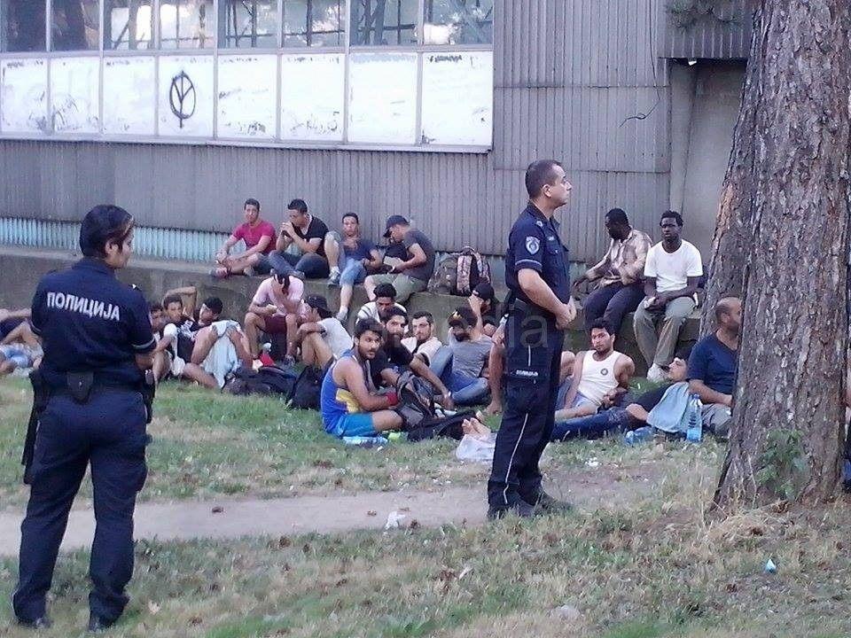 Pohapšena kriminalna grupa koja je nelegalno prevozila migrante preko granice
