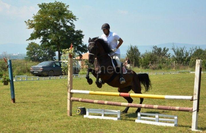 Takmičenje u konjičkim sportovima u Gornjem Međurovu