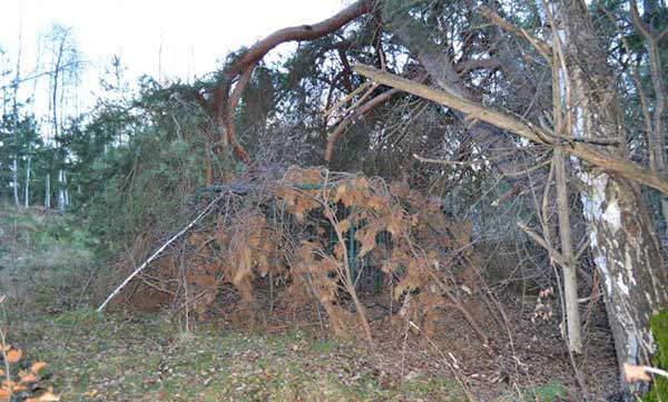 Pronađen kavez za hvatanje krupne divljači