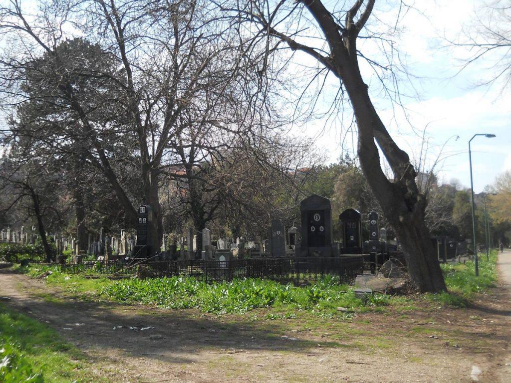 Šinteri hvatali pse na Starom groblju