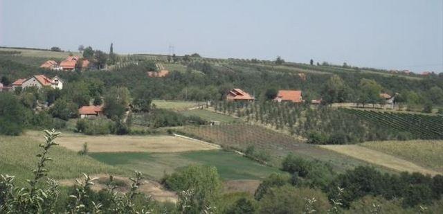 Makedonski državljanin upao u kuću kraj Niša i tražio da jede