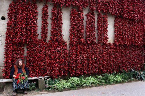 Dani paprike u Crvenom selu
