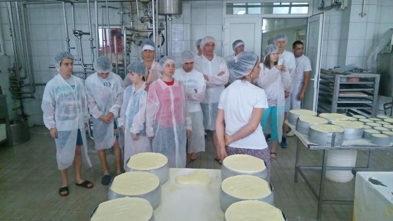 kamp_plivaci u mlekarskoj firmi