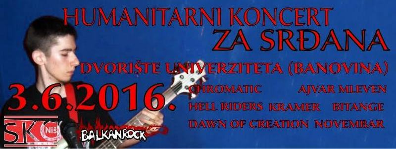 Humanitarni koncert za Srđana