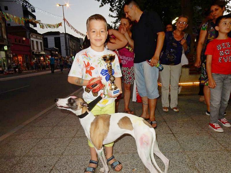 KARNEVAL Engleski hrt Luke Miloševića najlepši pas