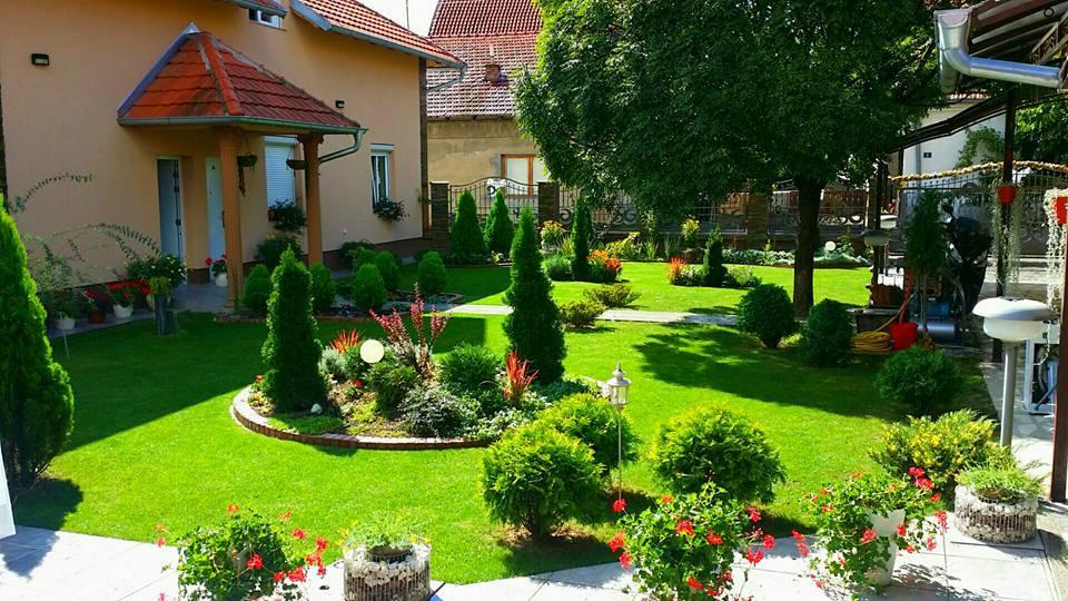 Ovo je zvanično najlepše dvorište u Leskovcu