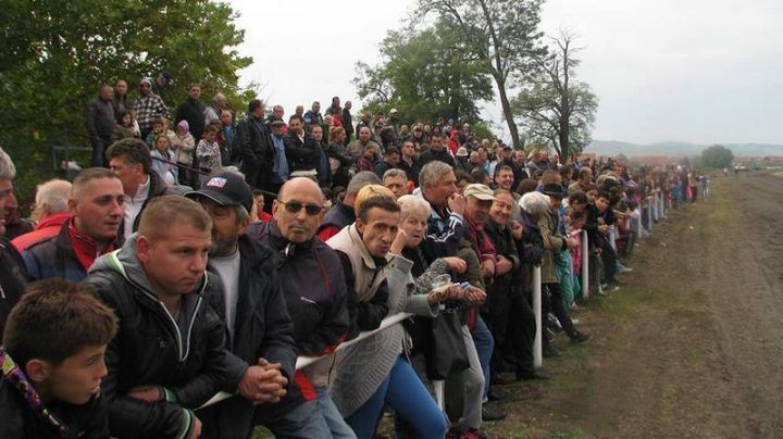 kasacke-trke_hipodrom_publika
