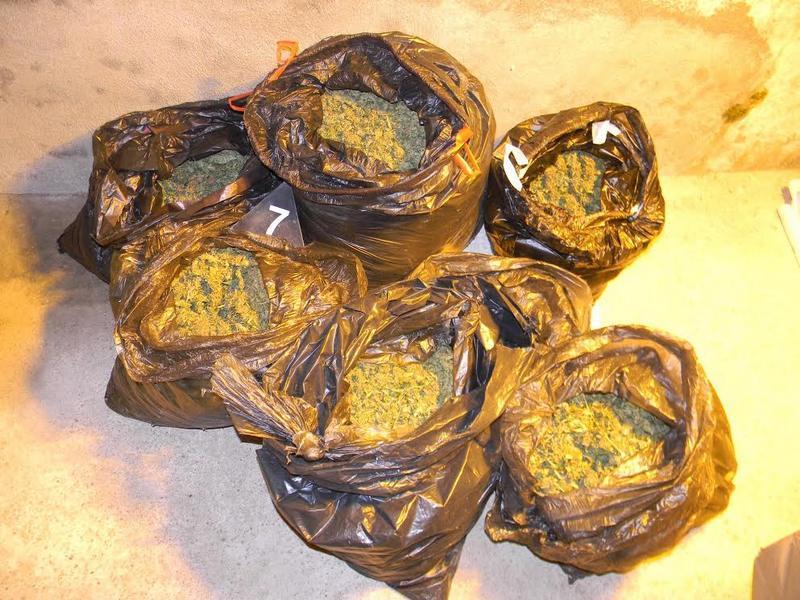 Uhapšena dvojica Doljevčana zbog 736 grama marihuane