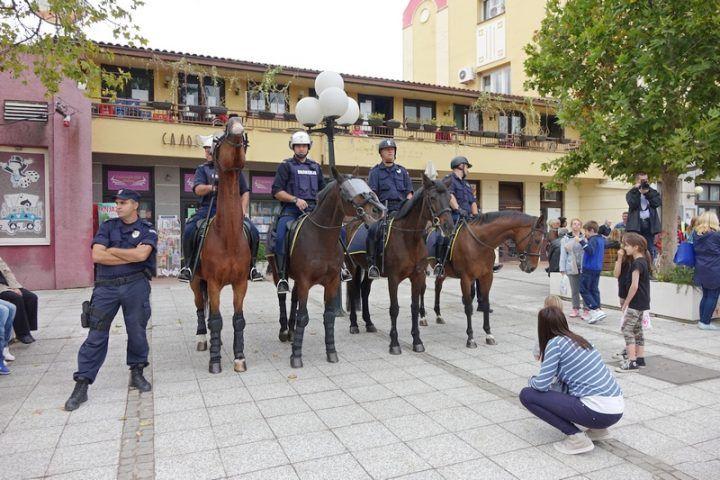 policija_konji