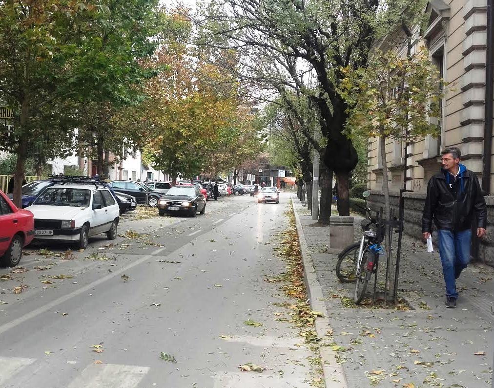 leskovac-jesen-1