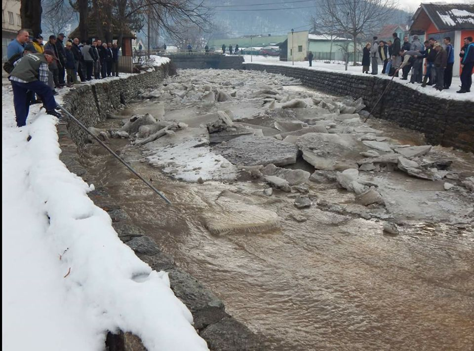 NESVAKIDAŠNJE Ledenice plovile Vučjankom i uznemirile meštane