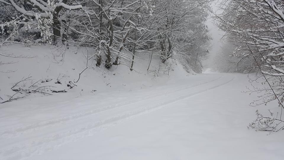 JOŠ JEDNA ŽRTVA SMRZAVANJA Telo muškarca pronađeno u snegu