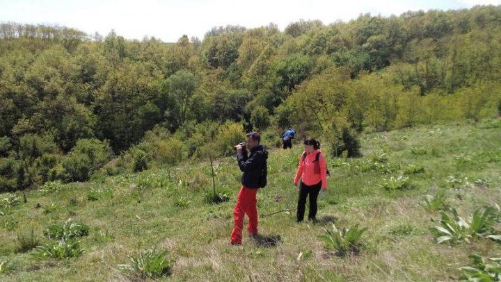 Arheolozi iz Beča istražuju praistoriju u leskovačkoj kotlini