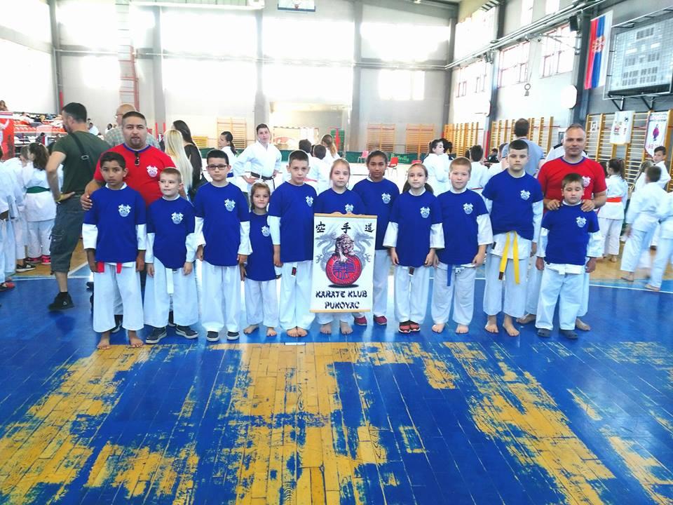 Karatisti iz Pukovca osvojili 11 medalja u Nišu