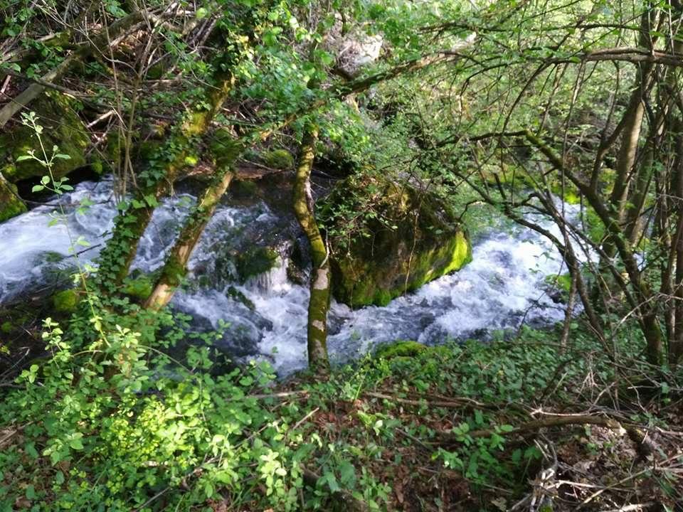 Kuršumlija traži stručnjake za izradu Elaborata o zonama sanitarne zaštite izvorišta podzemnih voda reke Toplice