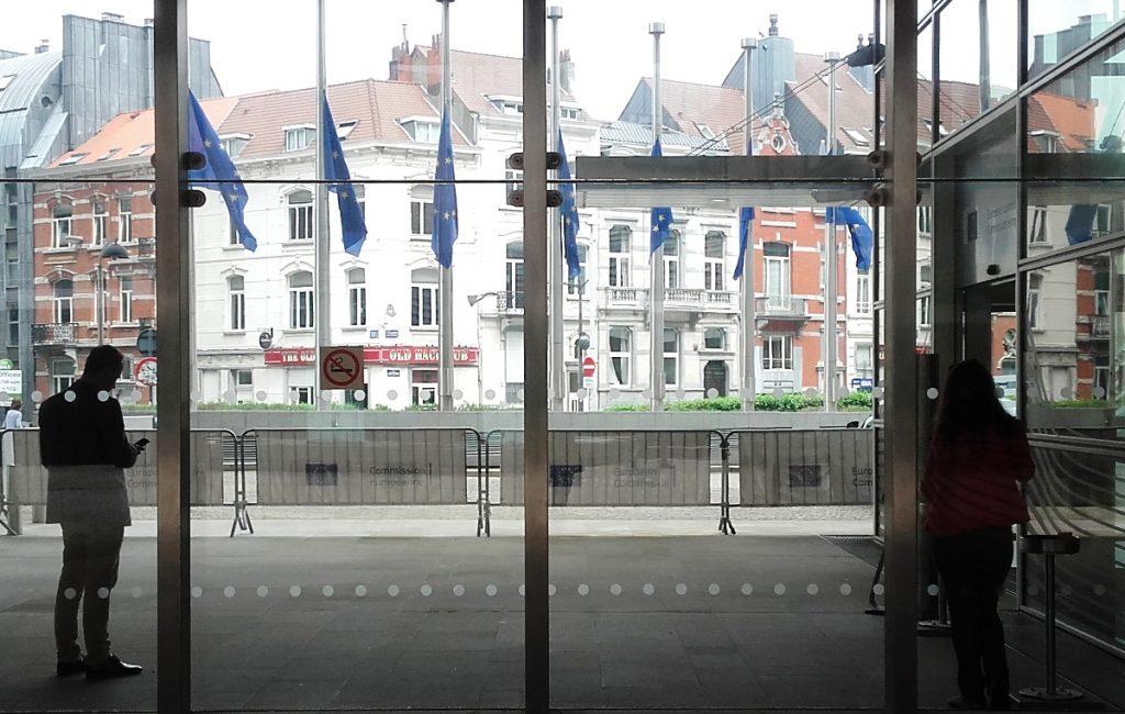 ISTRAŽUJEMO: Koliko Leskovac ima štete ili koristi od EU