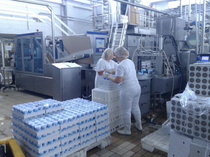Leskovačko mleko uskoro na grčkom tržištu?